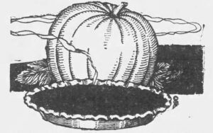 Pumpkin Pie recipe image, 1921(Camden Daily Courier, via Newspapers.com)